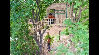 Download Make Mini Tree House & Special Stairs Around The Tree By Using Dry Bamboo . Video