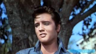 Download Elvis sings Gotta Lotta Living To Do (2K HD) Video