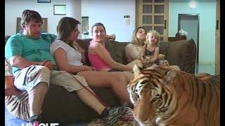 Download Unique au monde - ils vivent avec l'animal le plus dangereux du monde Video