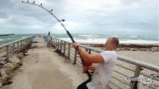 Download Extreme Saltwater Fishing! Video