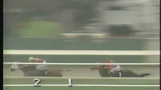 Download Thoroughbred vs. Quarterhorse - FG Dec. 1995 Video