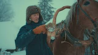Download Grandfather. Part I. Winter - Horse Logging Video