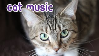 Download HALF A DAY of Relaxing Cat Music - Cat Sleep Songs! Video