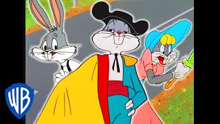 Download Looney Tunes   Was That Bugs Bunny?   Classic Cartoon Compilation   WB Kids Video