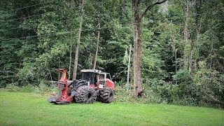 Download Epic tree fell   Gotta see!!! Video
