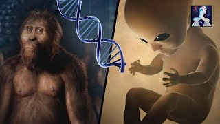 Download Aliens Genetically Created Us: Overwhelming Evidence Video