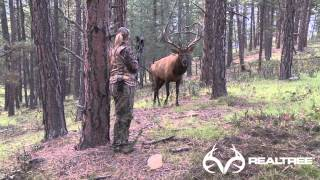 Download 15-Yard Files: Female Bowhunter Stares Down Giant Bull Elk at 4 Yards Video