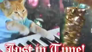 Download Keyboard Cat Christmas Album 2016 Video