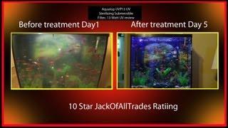 Download Aquatop UVP-13 UV fish Tank filter Review - fix any Algea Bloom problem 720pHD Video