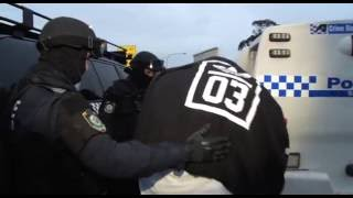 Download NSW Police Raid and Arrest Three People for Drug Supply Video