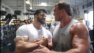 Download SERGI CONSTANCE OLYMPIA PLANS | ARM WORKOUT Video