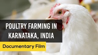 Download Poultry Farming in Karnataka India | Documentary Film | English Video