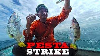 Download Nggak nyangka, menemukan sarang ikan Jenaha, dengan umpan andalan Panen Strike Video