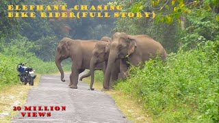 Download Elephant Chasing Bike Rider (Full Story) Video