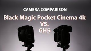 Download Black Magic Pocket Cinema Camera 4k vs. GH5 Video