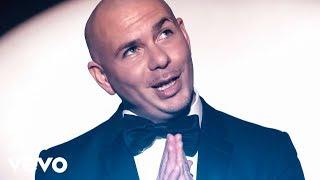 Download Pitbull, Ne-Yo - Time Of Our Lives Video