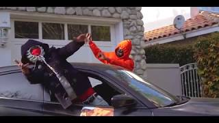 Download NBA Youngboy - FREEDDAWG Video