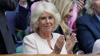 Download Why wasn't Camilla, the Duchess of Cornwall at the royal wedding? Video