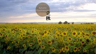 Download Chinese 24 Solar Terms Video