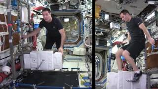 Download Thomas Pesquet: Space Station fitness Video