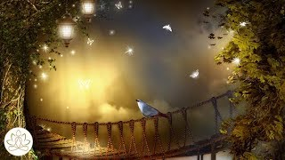 Download Soft Calm Music: Meditation Music, Peaceful Music, Stress Relief Music (Light of Hope) Video