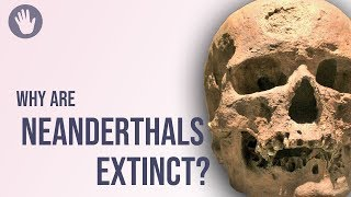Download Why Are Neanderthals Extinct? Video