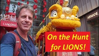 Download Hunting for LIONS in Malaysia! [The Chinese New Year Acrobatic Lion Dance] Video