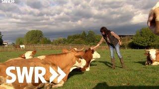 Download Weideschlachtung auf der Alb | SWR Kaffee oder Tee Video
