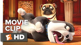 Download The Nut Job 2: Nutty by Nature Movie Clip - Rollover (2017) | Movieclips Coming Soon Video