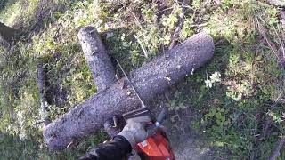 Download Some Sketchy Chainsaw Cutting Video