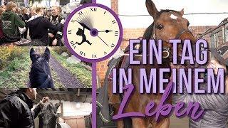 Download EIN TAG IN MEINEM LEBEN... | BinieBo Video