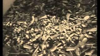 Download Holokauszt Auschwitz-Birkenau 1 rész Video