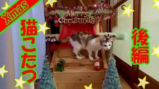 Download 猫用こたつにポカポカうっとりのネコ吉 Kotatsu as a Chrismas gift for my cat part2 Video