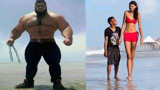Download 10 Ludzi Gigantów Video