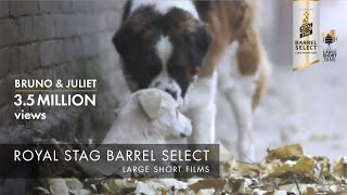 Download Bruno & Juliet | Imtiaz Ali | Royal Stag Barrel Select Large Short Films Video