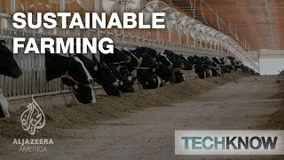 Download Sustainable Farming - TechKnow Video