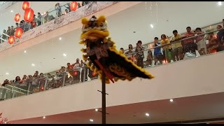 Download World Dragon & Lion Dance 2017 (Malaysia) high pole by Kokye 世界龙狮节(马来西亚站)將軍棟 - 國義 (4K UHD) Video