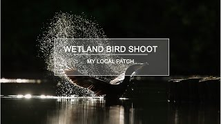 Download Nature Photography - Wetland Bird Shoot - My Local Patch Video