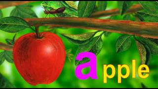 Download Alphabet Letter A - Lower Case Video