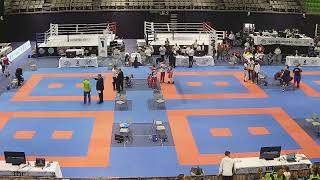 Download WAKO European Kickboxing Championship Children, Cadets & Juniors 2019 - Day 1 - Tatami 1-4 Video