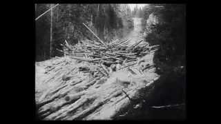 Download Tømmerfløting 1953 Video