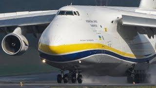 Download The 2nd - BIGGEST ANTONOV in the WORLD - Antonov An-124 LANDING (4k) Video