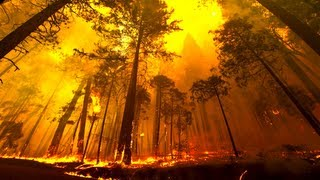 Download Yosemite Forest Fire Time Lapse and Flyover Video