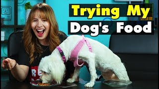 Download Dog Owners Try Their Dog's Food For The First Time | People Vs. Food Video