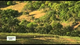 Download Bresil, Salvador de Bahia - Echappées belles Video