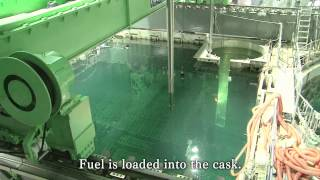 Download Removal of nuclear fuel assemblies from Fukushima Daiichi nuclear power plant Video