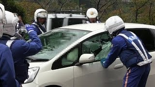 Download 緊急走行!!逮捕の瞬間!!警視庁 白バイ 車ガラス破壊の大捕物!!東京 市ヶ谷 2013.11.7 POLICE motor cycle Arrest break the window!!!! Video
