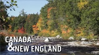 Download Discover Canada & New England on a Princess Cruises vacation Video