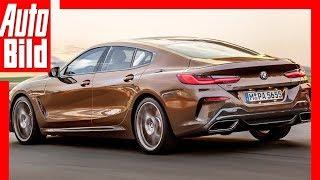 Download Zukunftsaussicht: BMW 8er Gran Coupé (2019) Details/Erklärung Video
