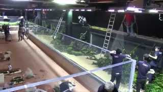 """Download """"The Road to the World's Largest Nature Aquarium"""" - First shot: Digest Video"""